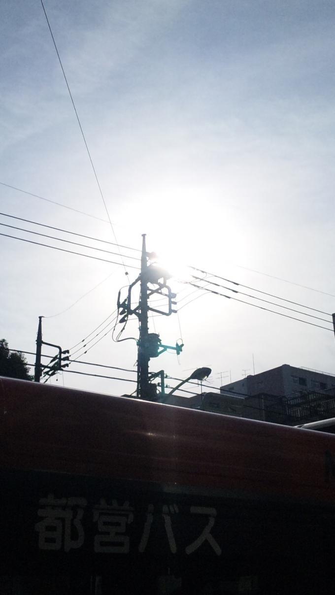 SUNSHINE ( usurabi )_20120224