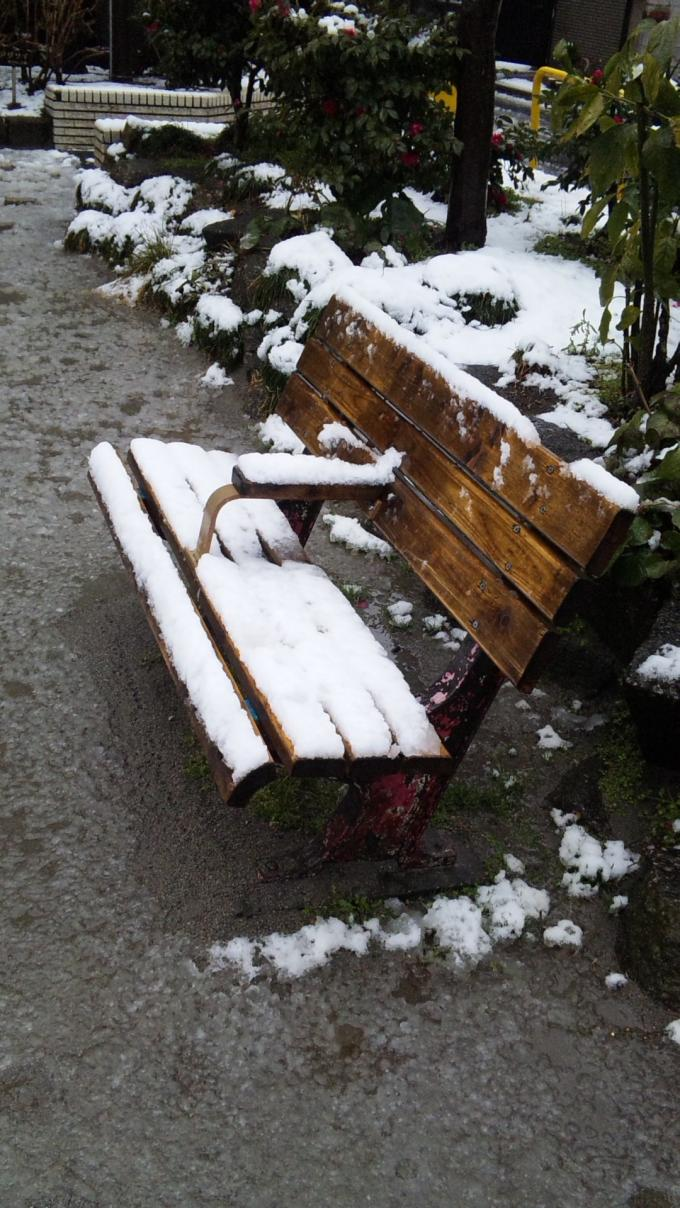 SNOW_20120229