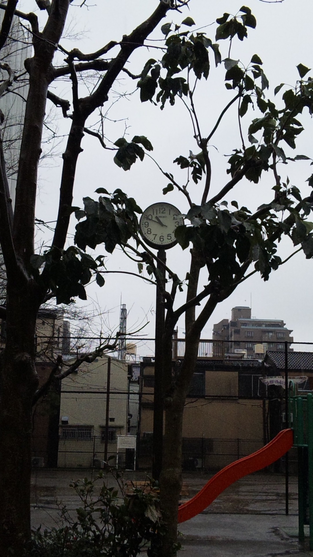 10:49_20120305