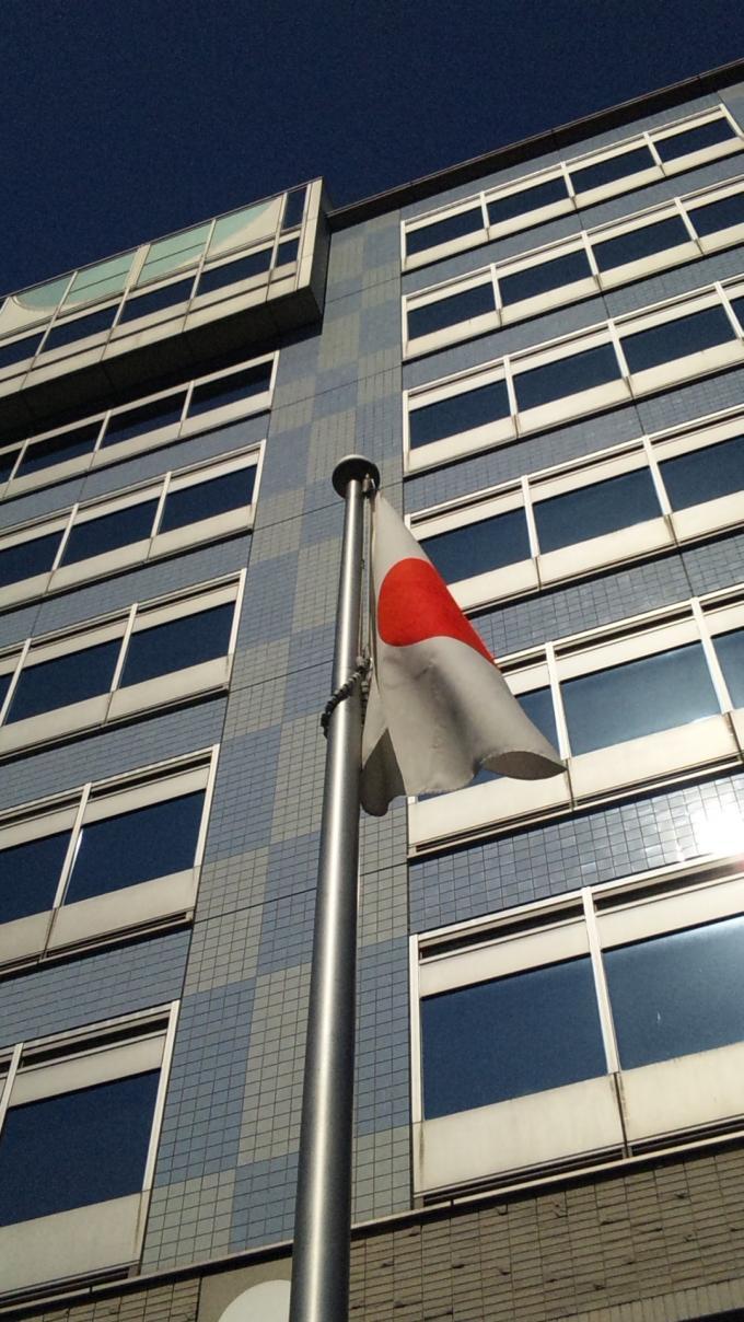 FLAG_20120313