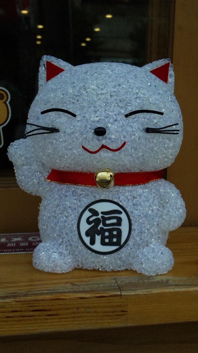 CAT_20120213