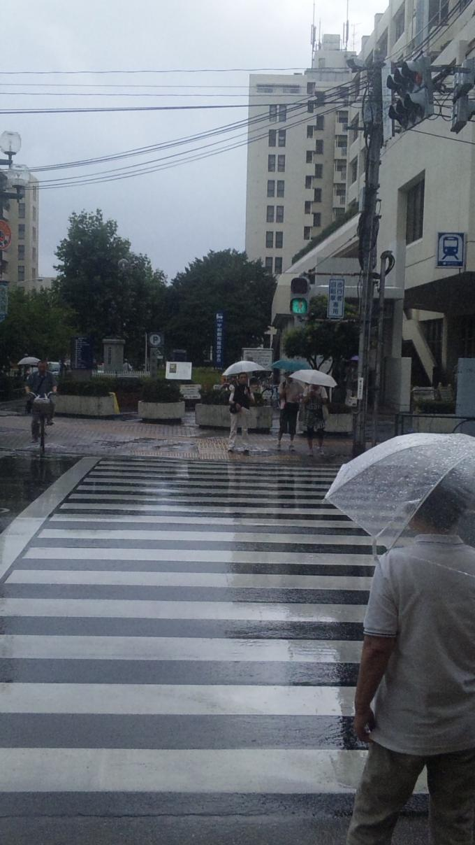 RAIN_20110804