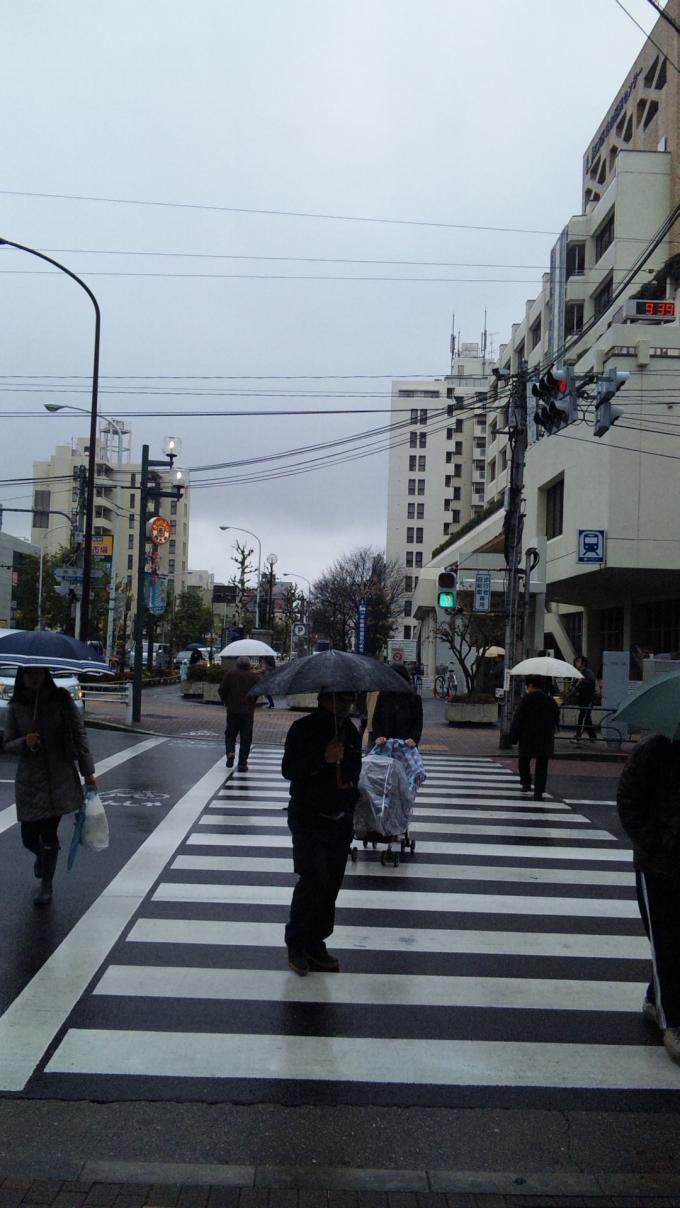 RAIN_20111209