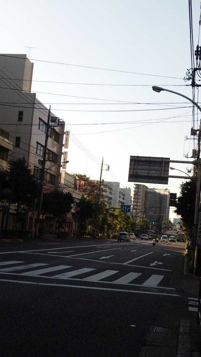 ROAD   IN   THE   MORNING_20111117