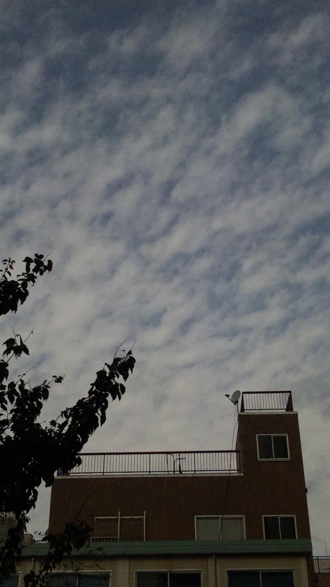 SKY_20111109