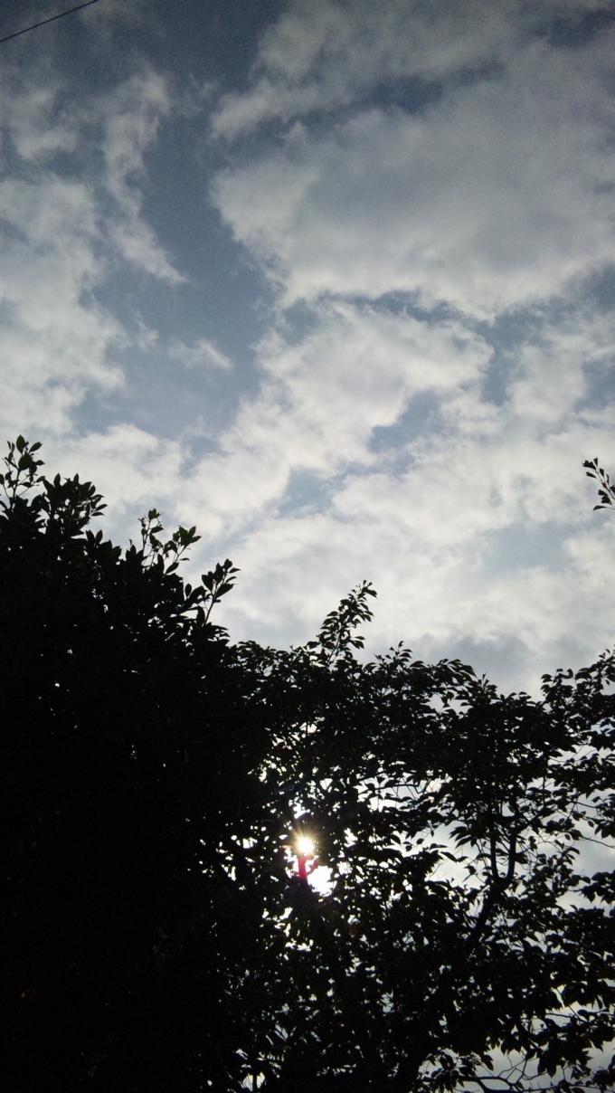SKY_20111114