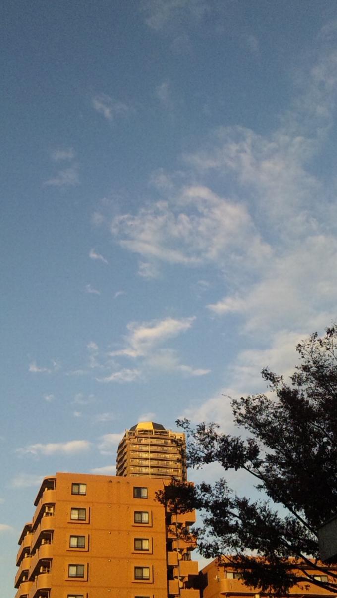 SKY_20111123