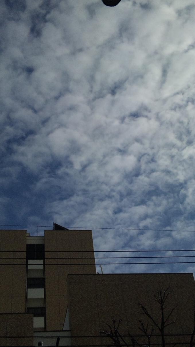 SKY_20120124