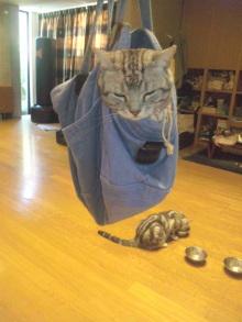 CAT_20110711