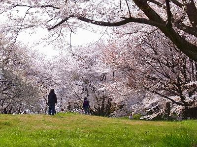 s紫雲出山公園