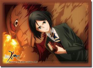 Fate/zero スリーブ