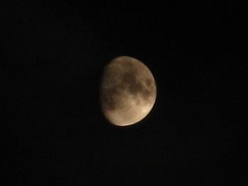 時々雲の隙間から月が見えました