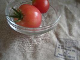 tomatteeee.jpg
