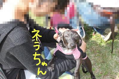 所沢レース2-2