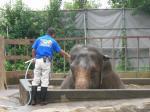 日本平動物園 (1)