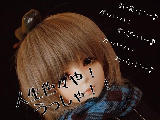 P1010641_20110520193323.jpg