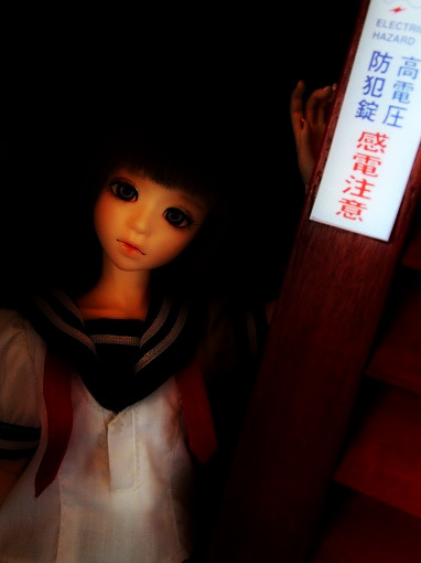 P1012428.jpg