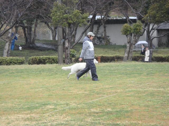 九州訓練競技会22