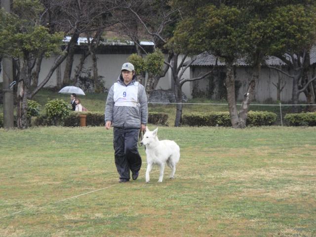 九州訓練競技会33