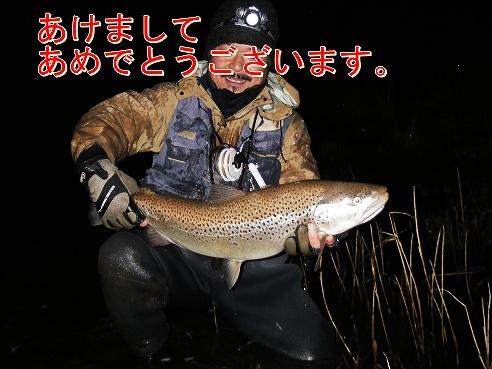 kykykuIMGP2570.jpg