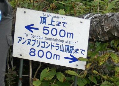 頂上まで500m