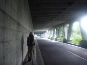 20090824爺・鹿島02
