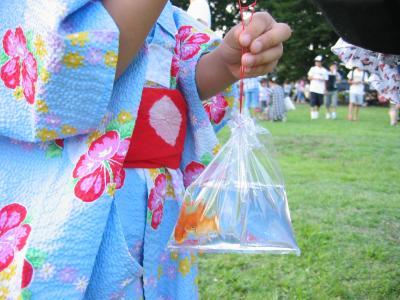 2011 07 22 金魚