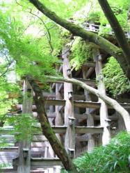 2011 08 24 清水寺