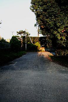 hifuku7.jpg
