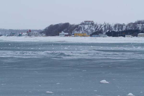 シャーベット状の流氷接岸