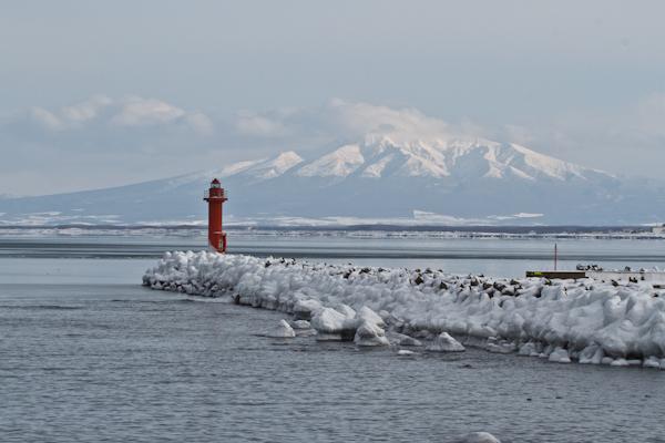 鱒浦港からの眺め