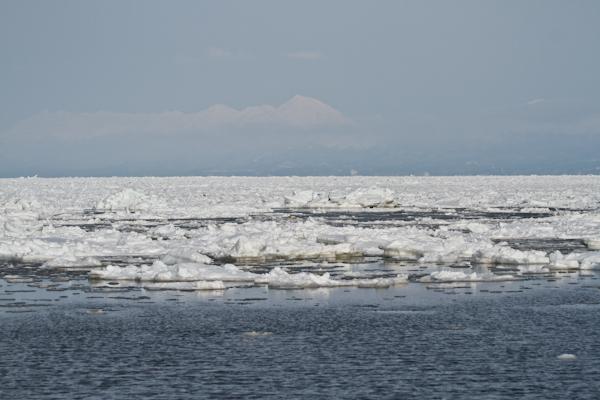 止別川河口からの流氷
