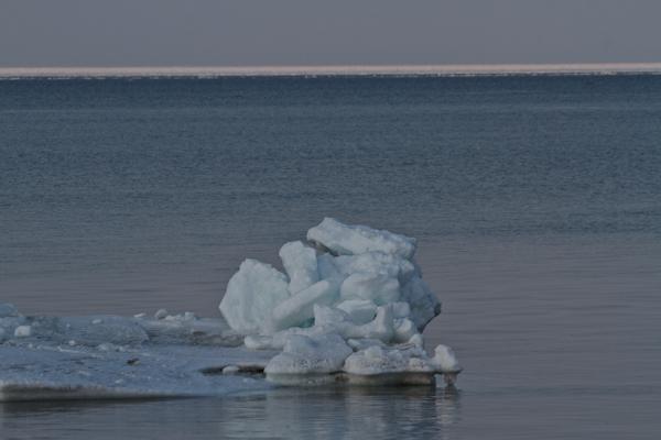 止別川河口付近の流氷