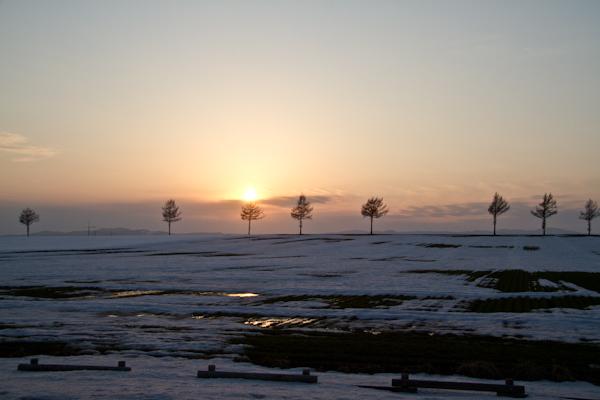 雪解けの丘