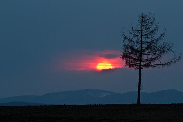 太陽がブラインドから・・・
