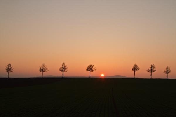 久しぶりの夕日