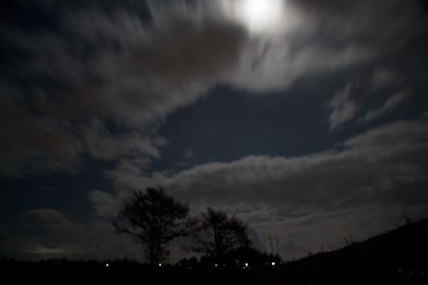月夜の密会?