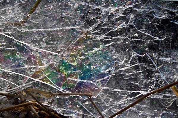 湖の割れた氷