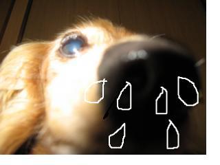 snap_fumi777_201133222952.jpg
