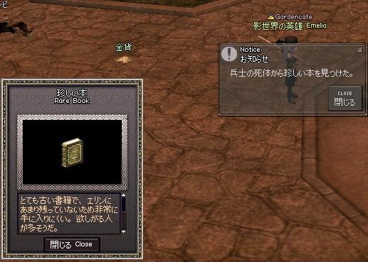 mabinogi_2009_10_23_015.jpg