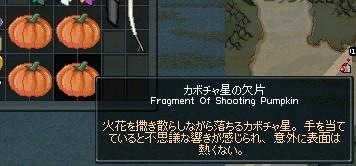 mabinogi_2009_10_29_020.jpg