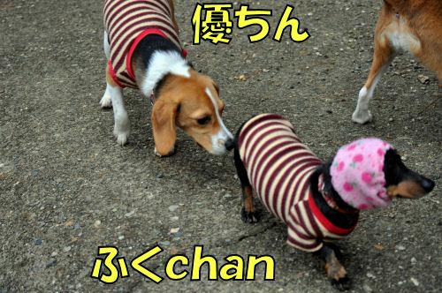20120225ふくchan