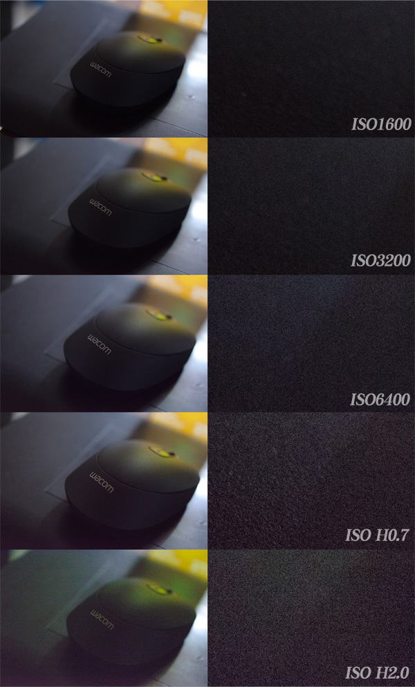 D7000_High_ISO.jpg