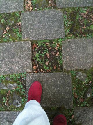 2011.11.4.市松地面きれいIMG_3334 のコピー