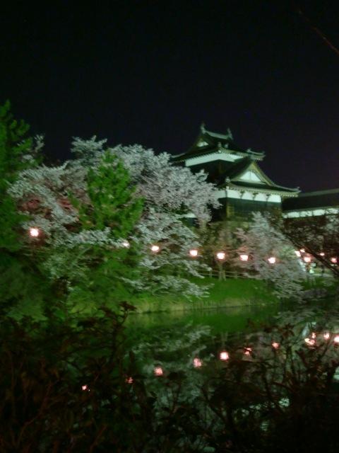 郡山城址櫓と夜桜