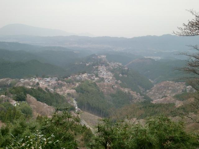 花矢倉からの風景