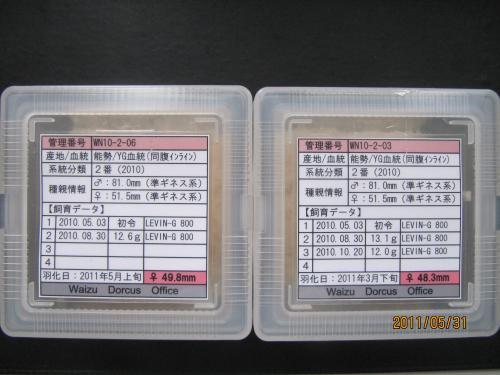 能勢YG49.8