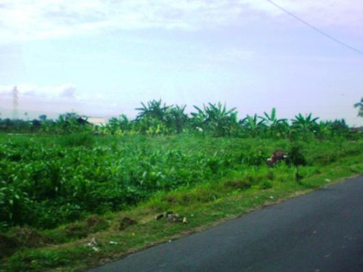 インドネシア 田舎