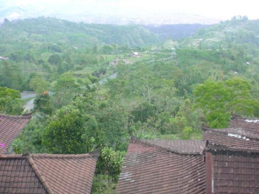 インドネシア キンタマーニ高原(4)