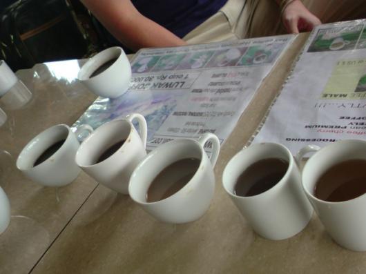 インドネシア バリコーヒー園 無料試飲
